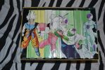 dragon ball z box set 3 by inuyashastar1