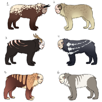 Cub adopts by eco226