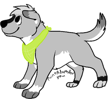Dog Adoptable OPEN by TheAdoptShop