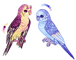 Budgies Auction [CLOSED] by Isavi