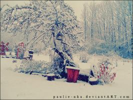 polish WINTER by paulie-nka