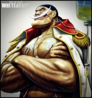 One Piece Whitebeard 2 by Adonis90