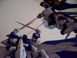 Strike Freedom VS. Wing Zero C by bluedragonflame