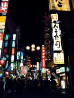 Japanese Streets by baby-drummer23