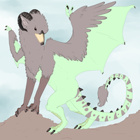 griffon dragon done by Qexx