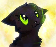 Baby Hollyleaf by Ask-Hollyleaf-Plz