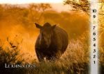 03 The Rhino by Varagh