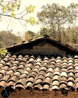 Old Roof #2 by ArizRamoz
