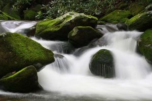 Unedited: Mountain Stream. by UriahGallery