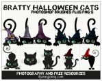 Bratty Halloween Cats Photoshop Brushes Plus PNG's by ibjennyjenny