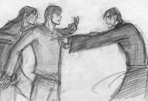 Sirius vs. Snape _poor Lupin_ by Emily84