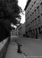 The Lonely Street by Zinantis