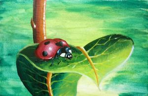 Ladybug by Temporalvisions