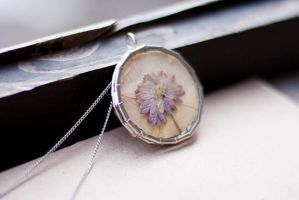 Glass Frame Locket Pendants with herbarium by rmalo5aapi