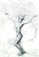 Birch Dryad by Nicoll