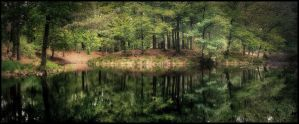 forest pond by MOSREDNA
