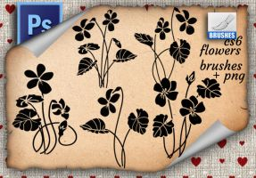 Flowers Brushes by roula33