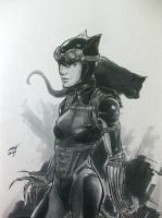 Catwoman (Injustice: Gods Among Us) by AaronNSN