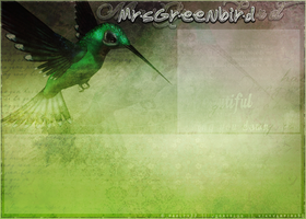Howrse Layout 11 by crystalcleargfx
