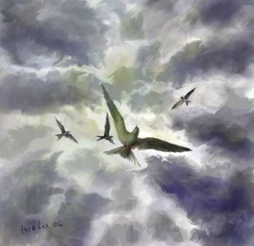 Flying Birds by iscalox