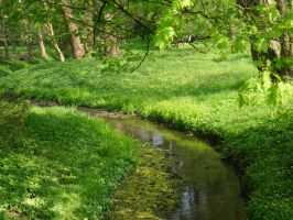 River, Creek, Stream Stock- 2 by Crystelly