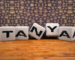 Cubes with letters by neindent