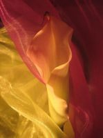 Aubergine And Yellow Satin by webworm