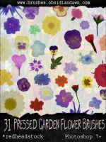 GIMP Pressed Garden Flowers by Project-GimpBC