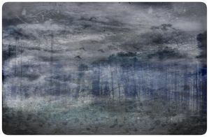 A Fading Forest by EvenDeathLies