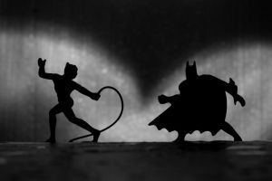 Merchandise Batman vs Catwoman by Maikel-S