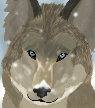 Wolf realism by Sprouteeh