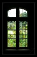 Green Window by Lejonlurv
