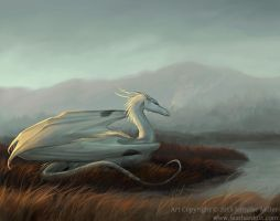 Ardea Sunrise by Nambroth