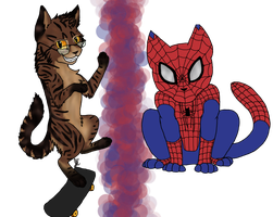 Spider-Cat by CatsInTheClouds