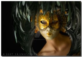 Masked by Transposure
