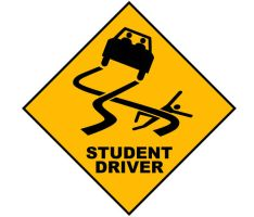 Caution: Student Driver by Zedarean