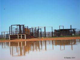 Cattle Yard Reflections 2 by Iluvbiscuit2