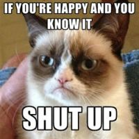 Grumpy Cat Meme 1 by jinxxnixx