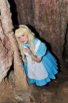 Alice in Wonderland - Walking through the caves by TenchiMuyou