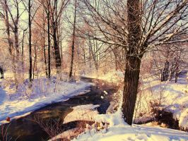 winter stock 33 by FrantisekSpurny
