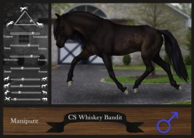 CS Whiskey Bandit by Siocain