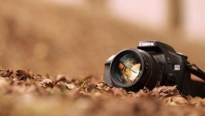 Canon EOS 30D by amora1012