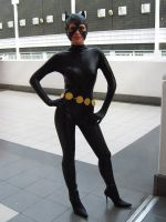 FBM 08: Catwoman by Poison-Harley
