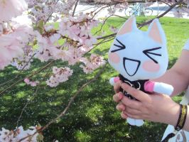 PicaCon 2014 - My cute cat and sakura flower. by Jessi-element