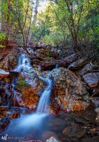 The Many Ways a River Flows by mjohanson