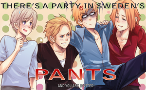Party in Berwald's pants by RevolutionaryDay