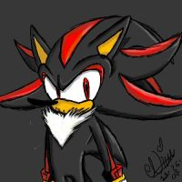 Shadow the Hedgehog by NinaTheHedgchidna