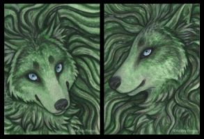 ACEO More Forest Wolves by vashley