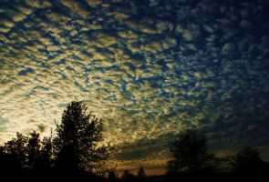 Cotten sky by lucium55