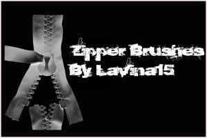 Zipper Brushes by lavina15